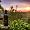 Export vino made in Tuscany 2015 a livelli record, +10,5%