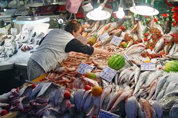 La pesca in Toscana affonda, aumenta il pesce non italiano