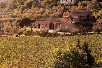 """Toscana, la guerra del vino: """"Il piano regionale ci impedisce di crescere"""""""