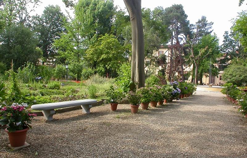 Il giardino dei semplici di firenze torna a nuova vita - Oltre il giardino torrent ita ...